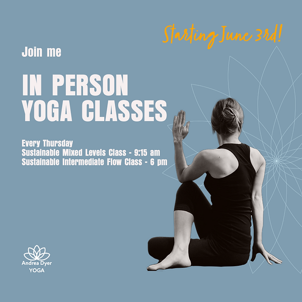 In person yoga classes.png