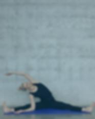 The Yoga Basics Channel -2.png
