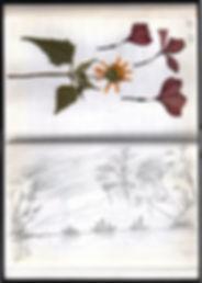 7_Luz_sketbook_14.jpg