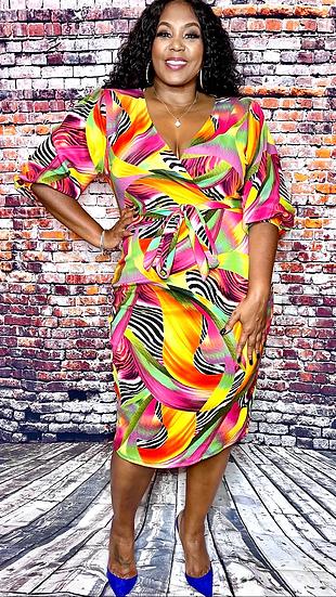 Wild Colors V Neck Dress