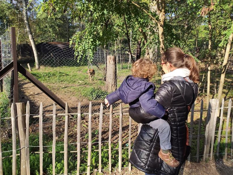 """""""Tu as vu c'est une Hyène... Ça te plaît, Léon ?  — Oui. On peut y aller ? """" Il était 10 h 12 quand il nous avait répondu ça, et à ce train-là (il nous disait ça à chaque fois qu'on voyait un nouvel animal, comme s'il ne prenait pas le temps de le regarder), la journée allait être longue pour tout le monde. """""""