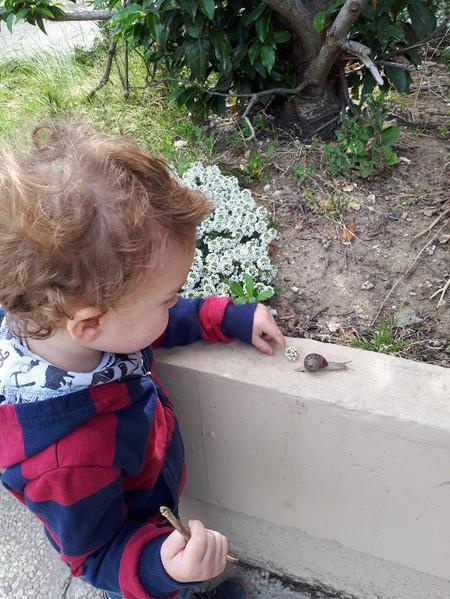 """""""""""Il avait continué à développer son langage avec « escargot a pas faim » ou « coccinelle fait dodo » (oui, je l'occupais pas mal à observer certains éléments de la nature qu'on pouvait découvrir dans notre copro…). """""""