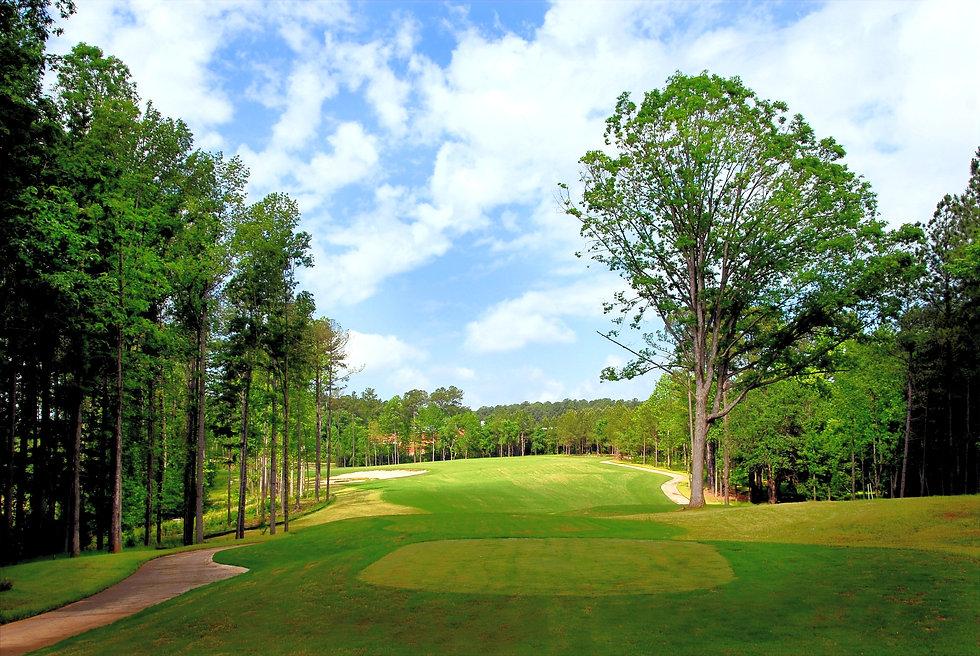 ATH.golfcourse_edited.jpg
