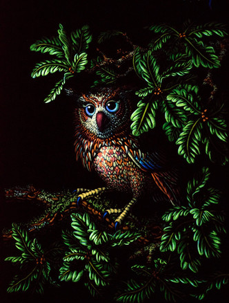 Small_Owl_edited.jpg