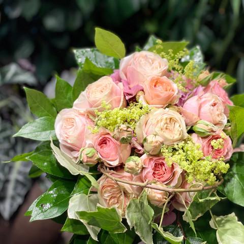 Bouquet de fleurs, Volubilis