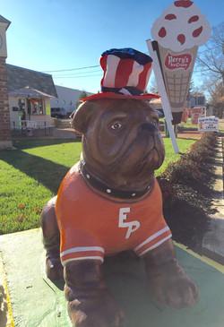 veterans dog
