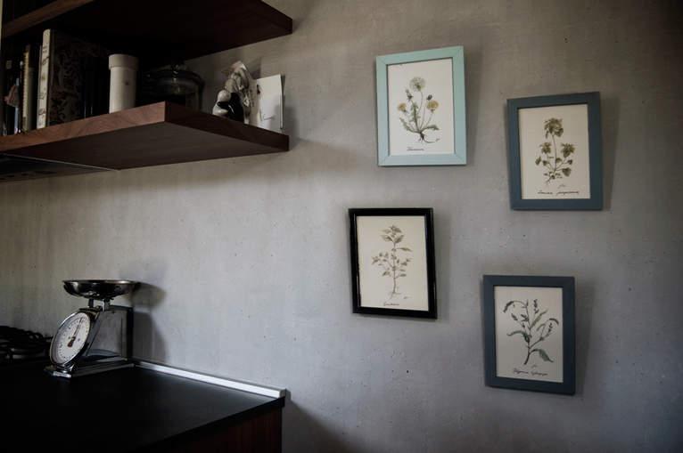 erbe selvatiche acquerelli