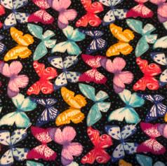 Multi Colored Butterflies on Black