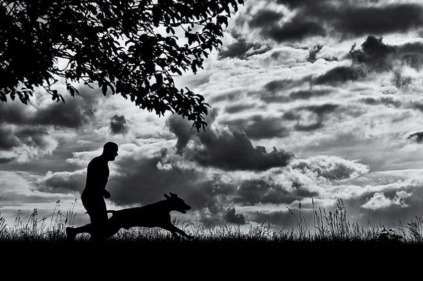 running-dog-man-and-dog-dog-silhouette-p