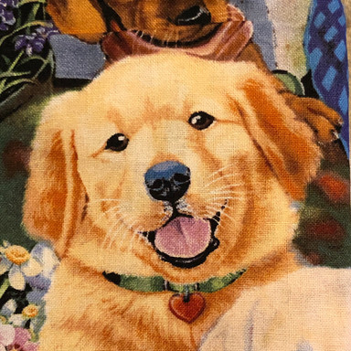Dogs - Color Painting