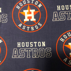Houston Astros Large Logo and Name