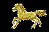 gold logo_edited.png