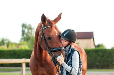 Young teenage girl equestrian kissing he