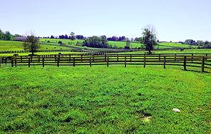Nicholas farm real nice.jpg