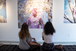 Installation View of ORCHID.Spring