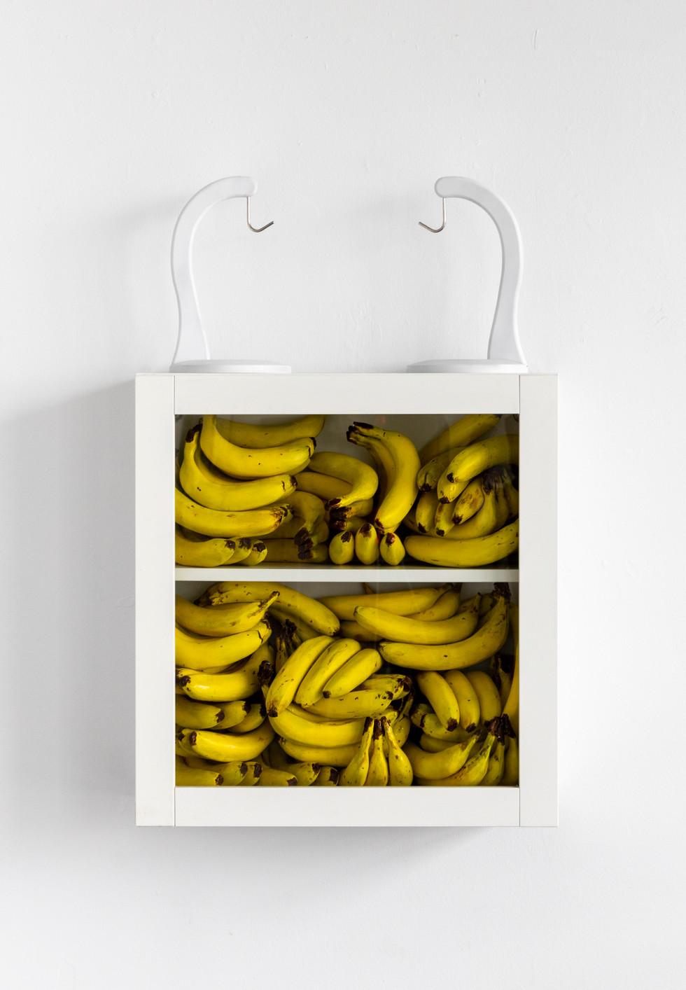 "CAITO, I Hoard Mementos, and You Hoard Bananas, 2019, Cast plaster, paint, cabinet, banana hangers, 37""x24""x9"""