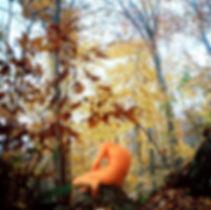 Fall_Orange_2_107.jpg