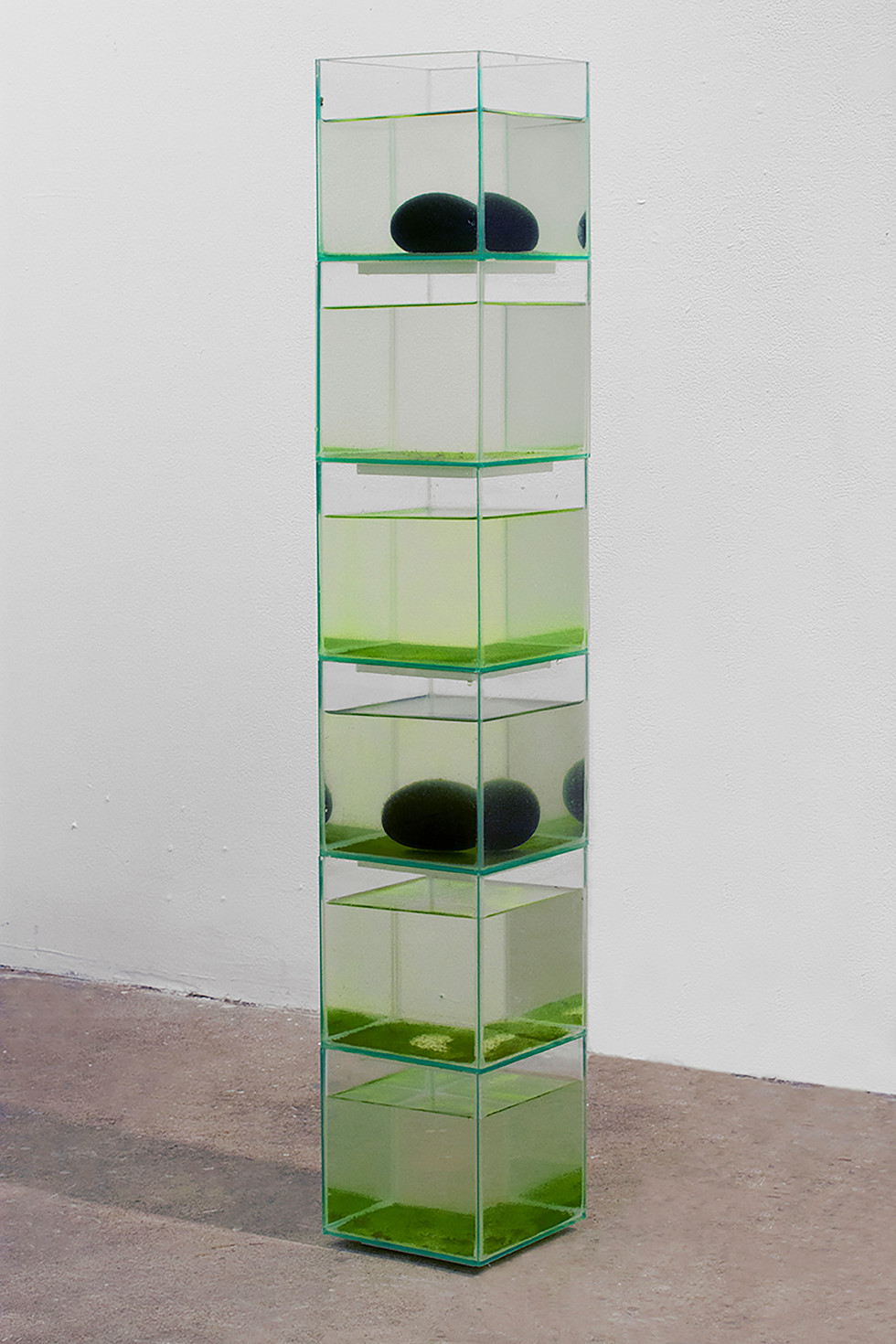 "Kyoko Hamaguchi, Home Away Home, 2020, fish tanks, piles of 6""x6""x6"""