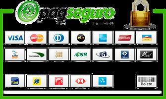pagseguro-formas-de-pagamento.png