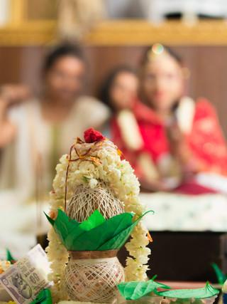 Wedding Ceremony Portrait