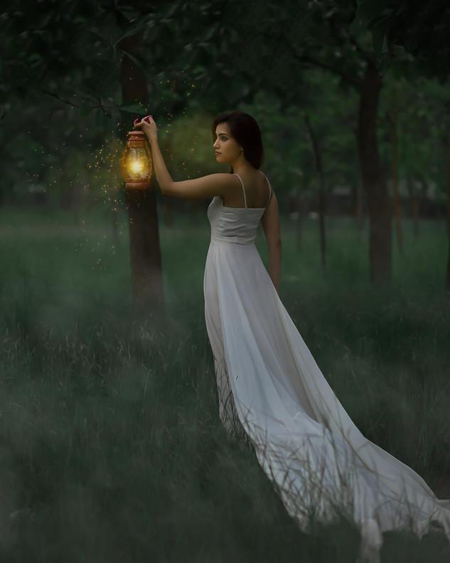 Irene Rudnyk Inspired Grassland Night Po