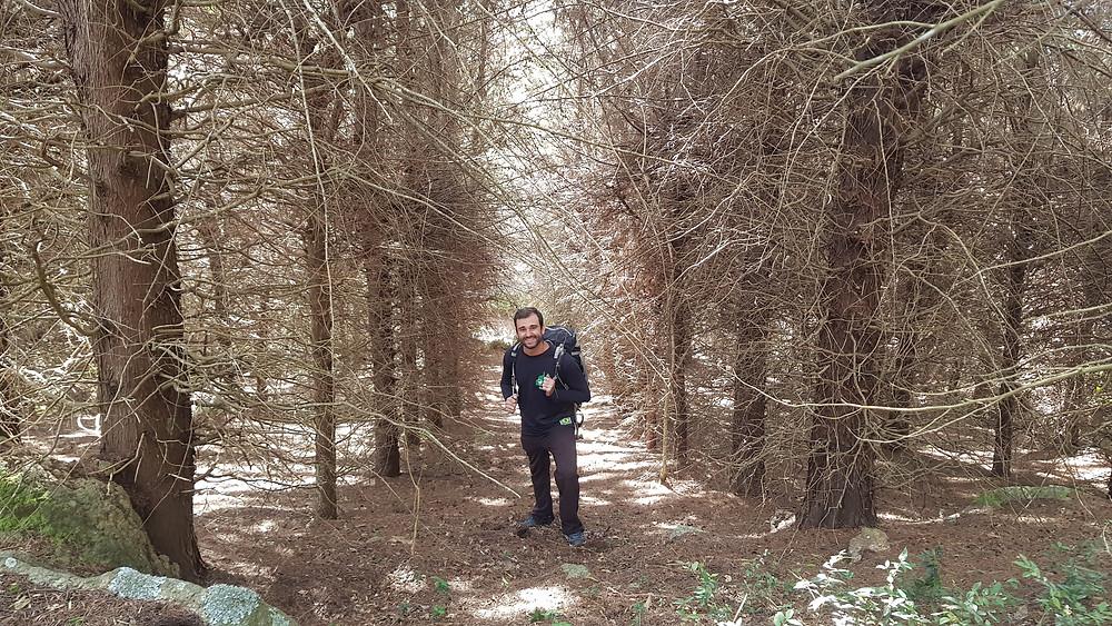 Pedro Bugim no agradável bosque que leva à base das vias do Morro da Reunião
