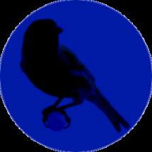 CanaryCryRevolution-3-e1406187306739.png