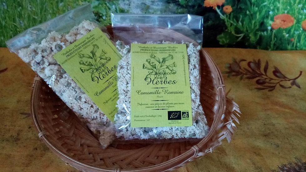 Camomille Romaine :20 g