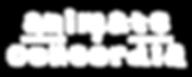logo_white_transparent.png