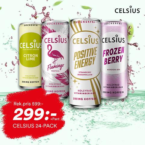 CELSIUS 299 pant.png