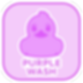 Purple-Wash-Icon.png
