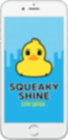 Squeaky Shine Launch Screen.png