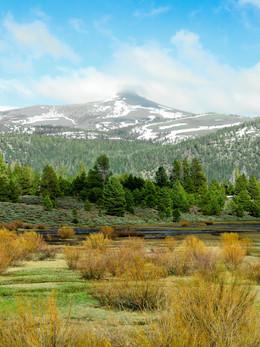 tahoe2019_web-12.jpg