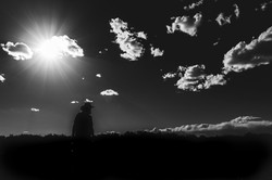 Silhouettes in Skies
