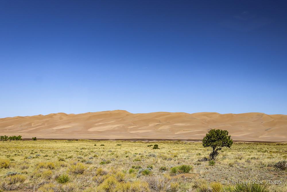 National Park Service Great Sand Dunes National Park