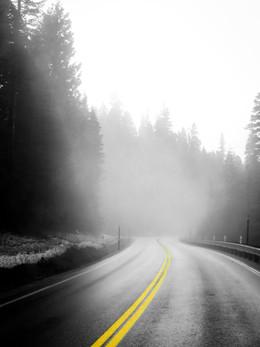 tahoe2019_web-4.jpg