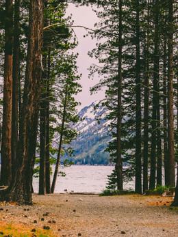 tahoe2019_web-28.jpg
