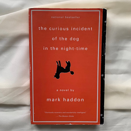 The Curious Incident of the Dog at Night-Time