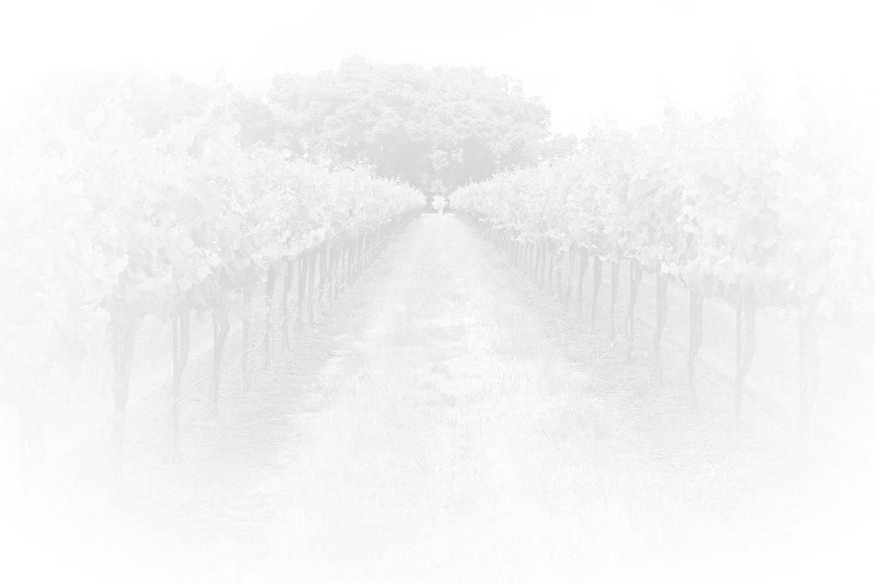 winery-3633009_1920_edited_edited.jpg