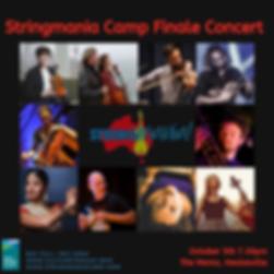 Stringmani Insta reduced.png