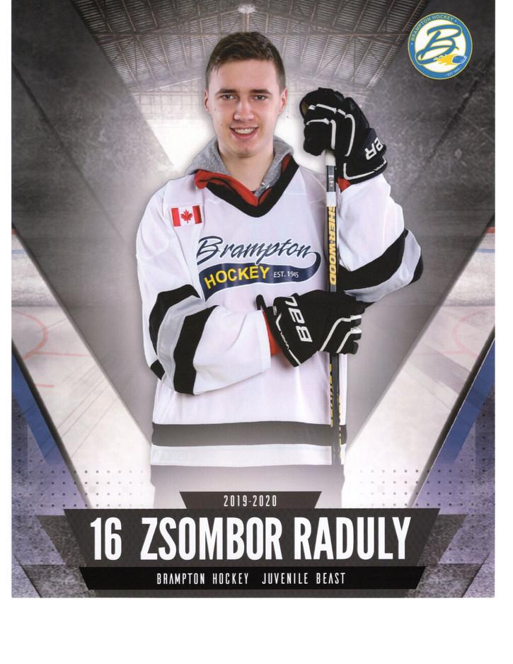 Raduly Zsombor