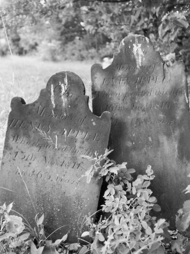 Tombstones of Henry & Eve Appel
