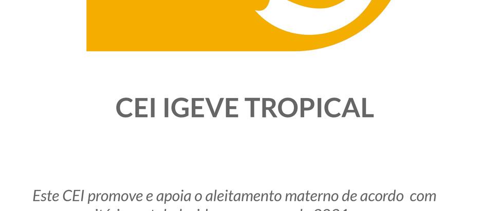 Secretaria de Educação de SP presta reconhecimento ao IGEVE