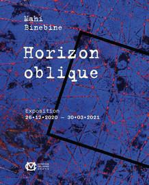 Exposition : Horizon Oblique