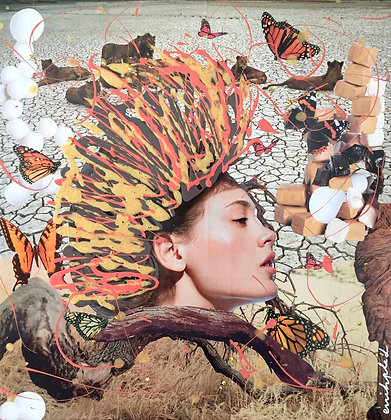 Tableau en collages enihpled Butterfly girl art