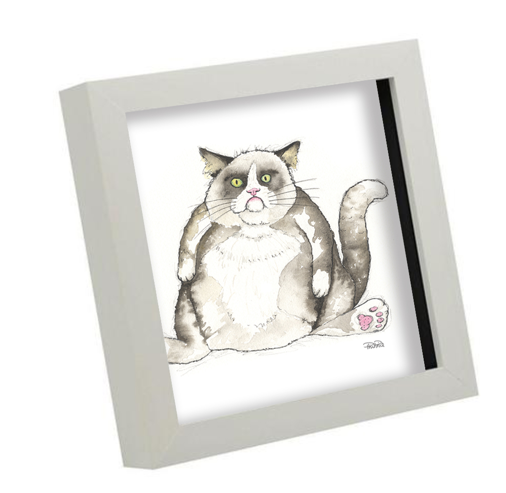 Fat cat boxframe