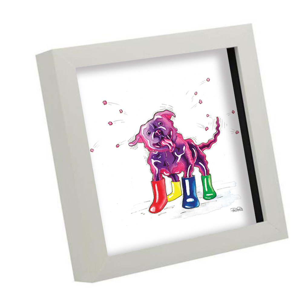 Jelly Dog boxframe