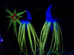 medusas+II+(5)