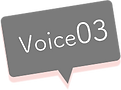 Voice03.png
