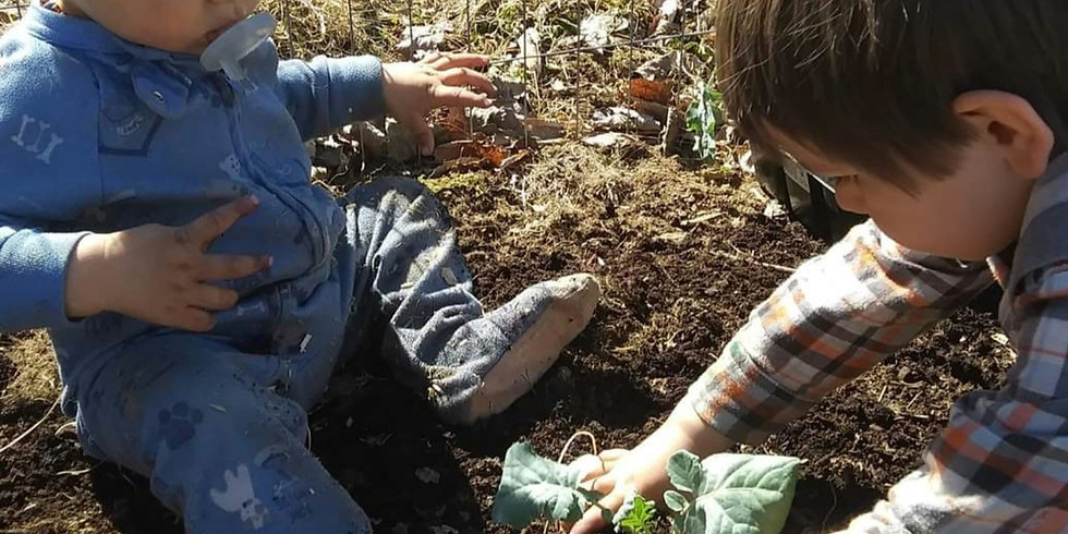 Food Forest/ Eden workshop and Potluck hosted by MOON DOG FARMS